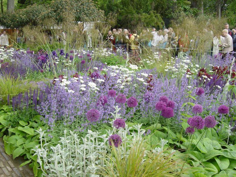 A Show Garden in RHS Chelsea Flower Show 2006