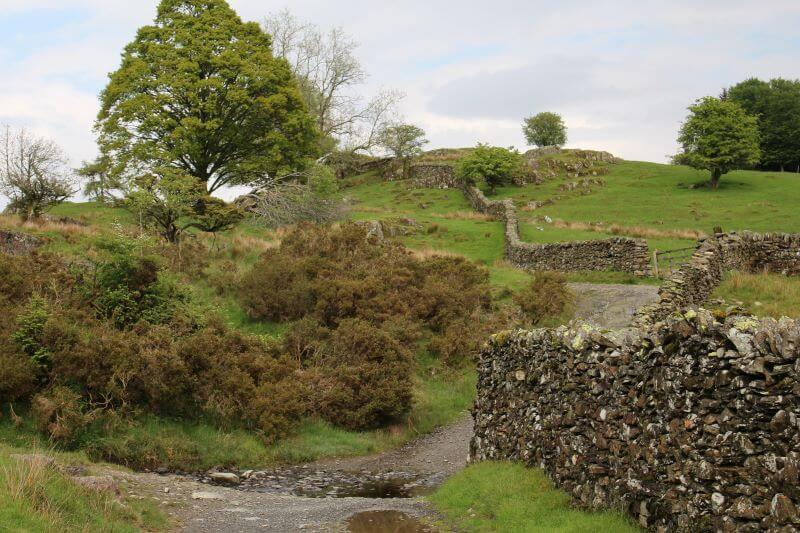 The Way to Moss Eccles Tarn