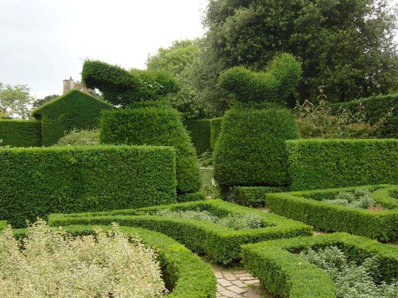 topiary at Hidcote Manor Garden