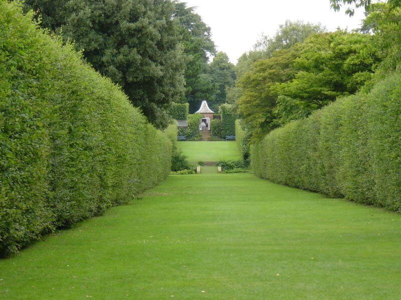 The Long Walk at Hidcote Manor Garden
